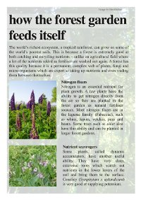 Page 7 of Reforesting Scotland's Forest Gardening display