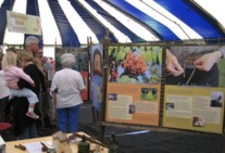 The Reforesting Scotland exhibition, complete with freestanding hurdles, viewed by members of the public at Touchwood 2007