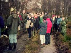 Photo of a Community Woodland group in Laggan, Scotland