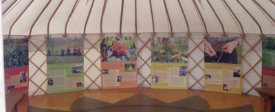 Some panels of the Reforesting    Scotland exhibition, arranged around the wall of a yurt